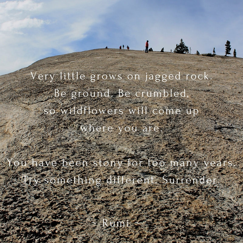 Very little grows on jagged rock.Be ground. Be crumbled,so wildflowers will come upwhere you are.You have been stony for too many years.Try something different. Surrender.